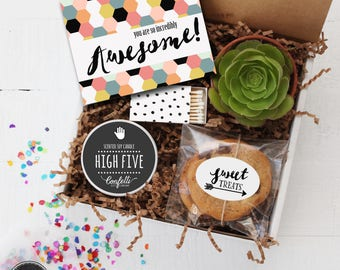 You Are So Incredibly Awesome Gift Box -  Thank You Gift | Appreciation Gift | Best Friend Gift | Congratulations Gift| Coworker Gift |