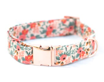 "The ""Brittany"" collar"