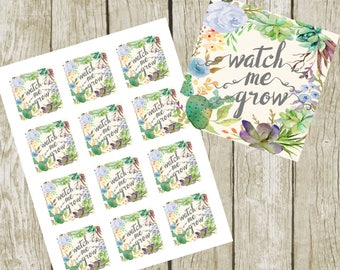"""Watch Me Grow Tags. 2"""" Square Tags, Baby Shower Boy Succulent Favor Tags, Digital File, Blue Succulent Favor Shower Tags. Instant Download."""