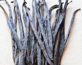 50 g (15 cm), GOURMET Grade, Mexican Vanilla Beans - Voladores Vanilla