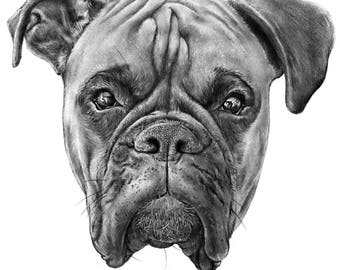 Boxer Dog: Handmade Art Pencil Drawing (Argos) Digital Download