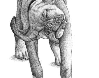 Boxer Dog: Handmade Art Stippling Drawing - Adorable Puppy Boxer Shaking (Spikey) Digital Download