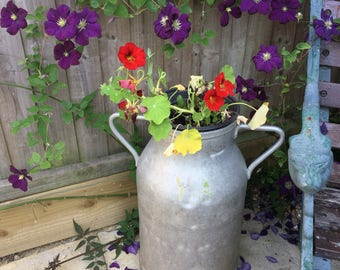 Traditional French vintage milk churn in aluminium. Use as an architectural feature or as a flower planter in the cottage garden setting