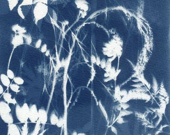 Original Unique Botanical Art Cyanotype Print of Wildflowers and Grasses