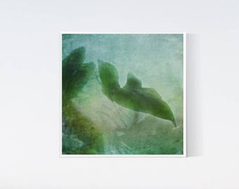 Leaves print Square leaf photo 12x12 instant download Art photography Botanical decor Green aqua blue wall art Watercolor arts Downloadable