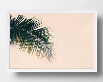Nature print, Palm leaf, Hawaii, Nature photography