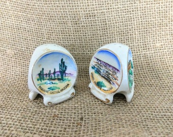 Vintage Souvenir Salt and Pepper Shakers with Arizona State Symbols / Grand Canyon, State Building, and Saguaro Cactus