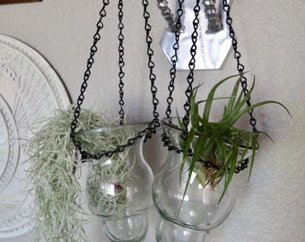 Set of 2 Hanging Glass Terrarium Planters