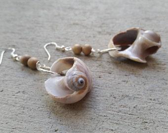Surf Tumbled Shell Earrings  Shell and wood earrings Beach earrings