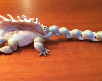 shell Dimetrodon