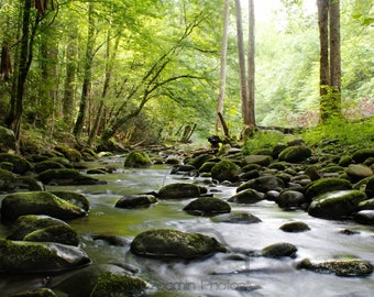 Little Pigeon river that flows through the Great Smokey Mountains