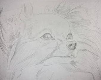 Custom Silverpoint Pet Sketches