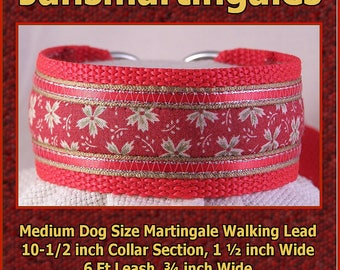 Jansmartingales, Collar and Leash Combination Walking Lead, Whippet, Medium Dog Size, wred104