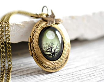The Secrets of Life  Locket Necklace