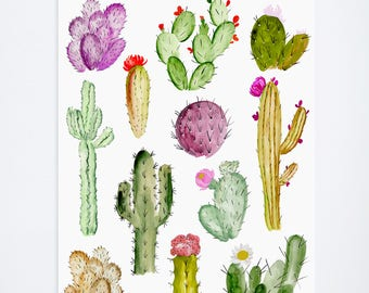 Watercolor Cacti Study - Plant + Floral Prints  - 11 x 14  - Illustration - Art Print