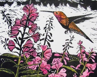 Hummingbird and Fireweed