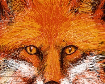 PRINT Sly Fox