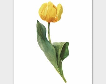 Yellow Flower Wall Art (French Cottage Home Decor, Botanical Home Office Print, Minimalist Gift for Her) --- 8x10 or 11x14 Mon Tresor Tulip
