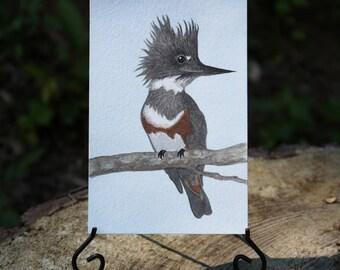 Original Painting / Belted Kingfisher Original Watercolor Painting / Small Original Artwork 4x6
