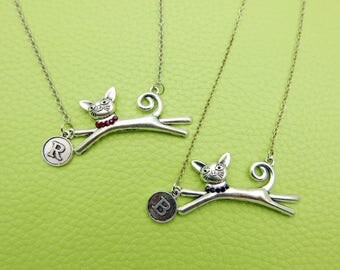 Necklace Royal cat stainless steel chain
