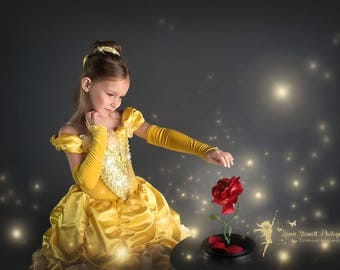 Classic Belle Princess Gown Costume in Yellow