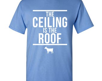 The Ceiling is the Roof T Shirt - Carolina Blue