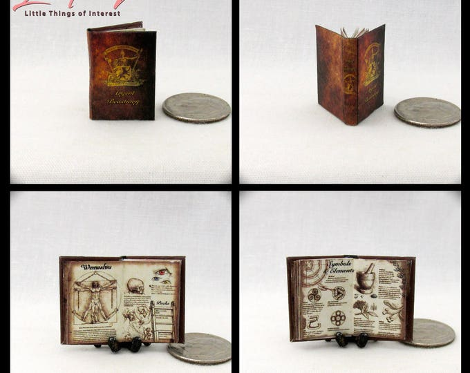ARGENT BESTIARY Miniature Dollhouse 1:12 Illustrated Book Werewolf Teen Wolf Supernatural Werewolf Packs Alpha Kanimas Banshee Symbols