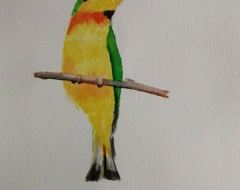 Little Bee Eater Bird Animal Watercolour Original Painting Drawing A4