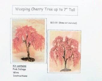 "KIT  Weeping Cherry up to 7"" Tall"