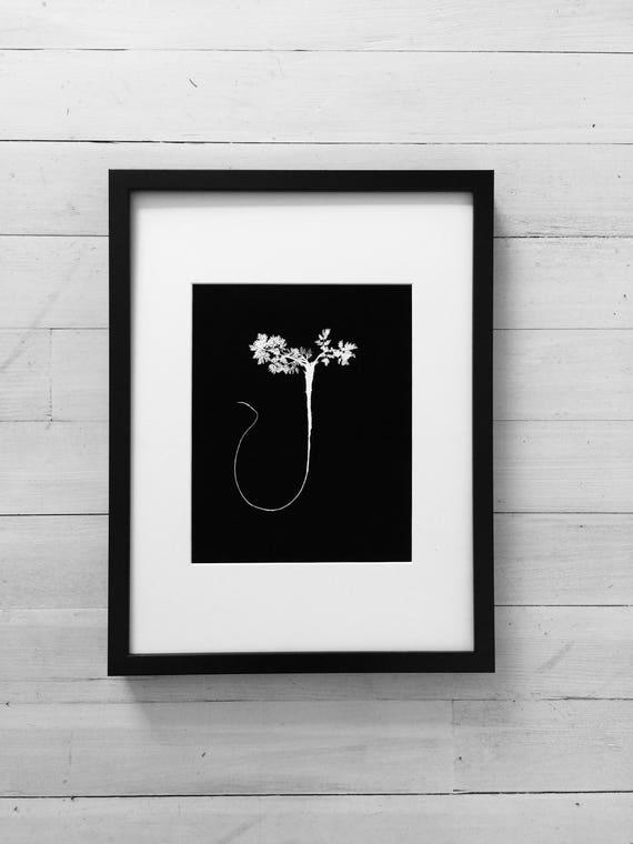 Pressed fern, Black Botanicals, Botanical roots, fern art, botanical art, pressed plant, original botanical, original art, handmade print
