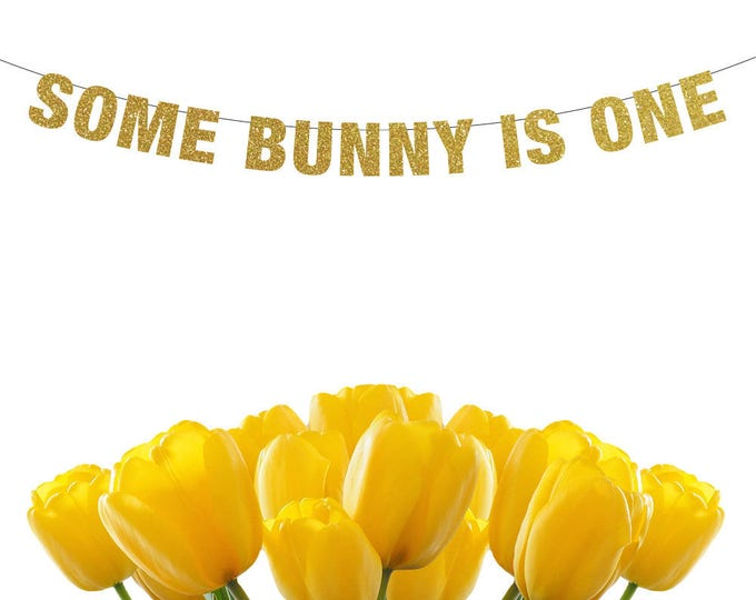 Some Bunny Is One Banner, some bunny is one decor, Easter Banner, Easter Decor, Easter Photo Prop, first birthday banner