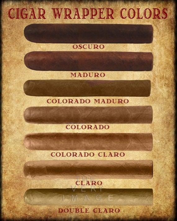 Cigar Art Cigar Wrapper Colors Chart Cigar Poster Tobacco