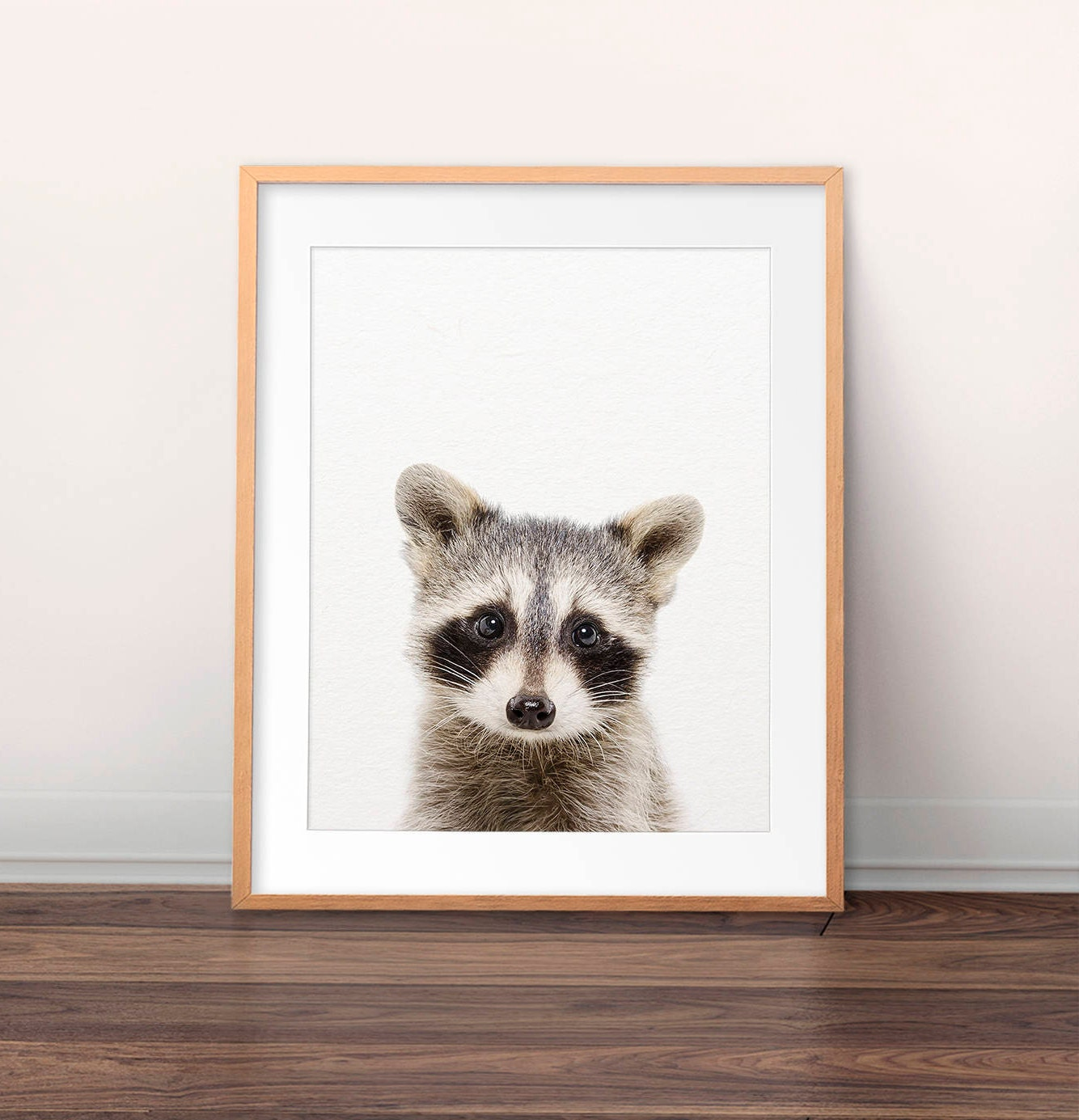 raccoon print baby raccoon photo cute baby animal print
