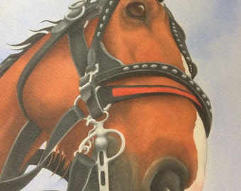 """clydesdale horse painting """"Big John"""""""