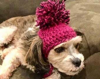 Crochet Dog Hat, Dog Hat, Pom Pom Hat