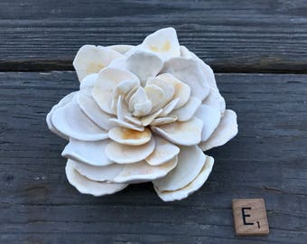 Large size-California Shell Flowers/ Home Decor / House Warming Gift / Beach House Decor / Natural Shells