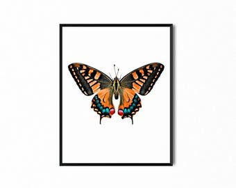 Butterfly Orange, Pink, Turquoise Printable, Wall Art, Nature Decor, Art Print, Digital Print