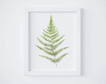 Fern Print No 2 - Fern painting - Fern - Fern watercolor - home decor - watercolor painting - greenery - fern art - fern leaf - leaf