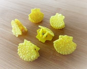 6 pc Yellow Glitter Shell Seashell Clam Clamshell Hairclip Hair Clip Accessory Claw Mermaid Accessories Butterfly Clips