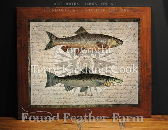 "Compass and Fish ~ Original Vintage Art Collage 20"" x 24"" Framed Giclee Print"