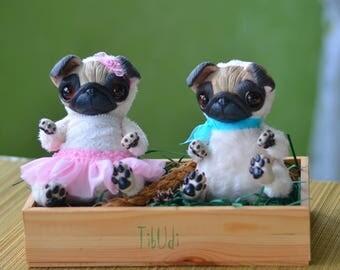 Sweety pugs