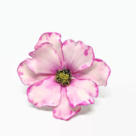 Painted Blush and Pink Cosmos