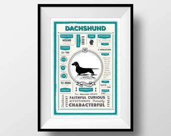 Dachshund Breed Traits Art Print, Dachshund Dog Infographic, Dachshund Gift Idea