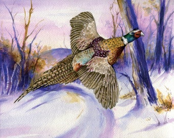 Pheasant watercolor