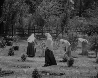 2018 Calendars -- Sisters of the Valley