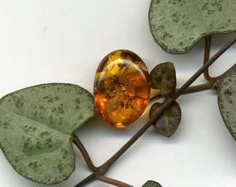 Amber (392) natural stone, smooth, 15 x 11 x 8 mm