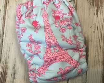 Eiffel Tower Paris France Hybrid Fitted Cloth Diaper OS One Size FDR Organic Zorb