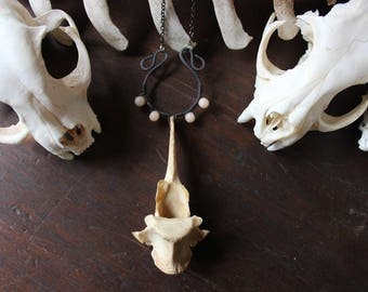 Bone & Beads