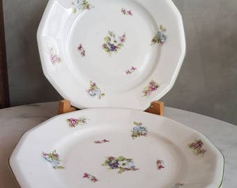 Set of Two Schlaggenwald Dessert Plates. 20 cms