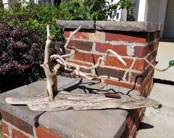 "Driftwood Art: ""The Wishing Tree"""